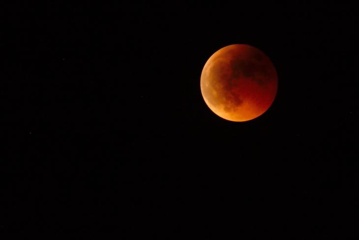 Lua Sangrenta [Blood Moon (salendron)]