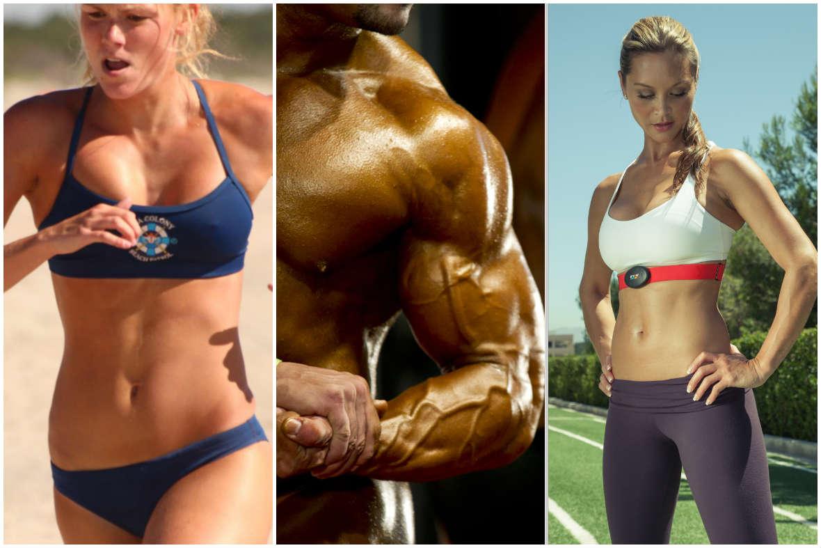 Creatina: A Ciência do Músculo