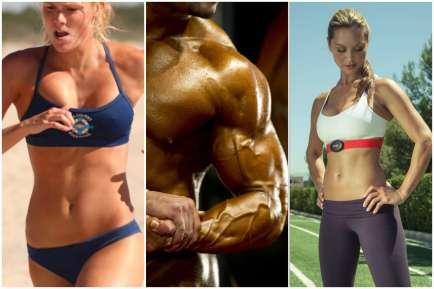 Ciência do Músculo - INFOSOL.ME