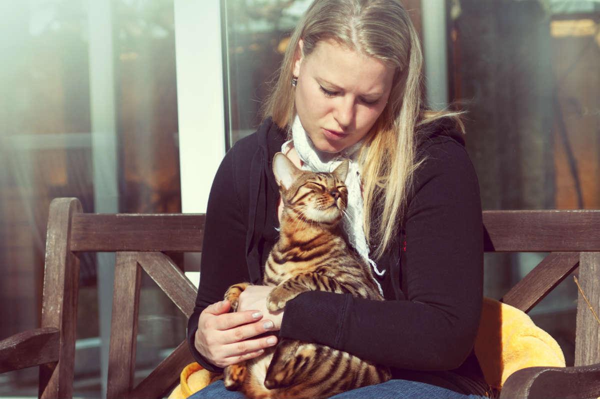 Mulheres grávidas e gatos: os verdadeiros riscos da toxoplasmose