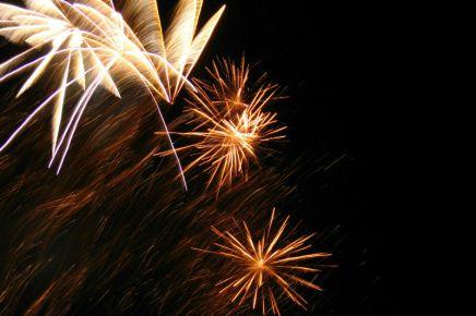 6 dicas pra seu animal não sofrer com fogos de artifício noréveillon